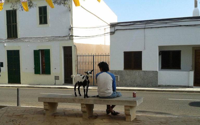 Ziegenpeter sitzt mit seiner Ziege auf einer Steinbank in Alqueria Blanca, Mallorca