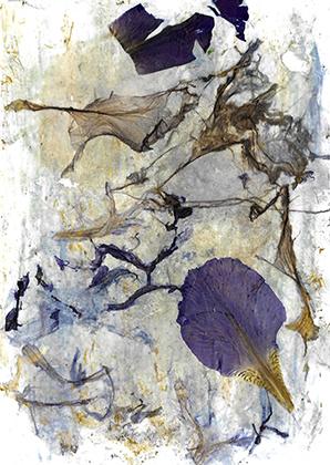 "ARTEPostal Karte 0620-2, ""Flor de Iris"", Blütencollage"