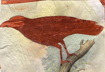 "ARTEPostal Karte 0713, ""Erd-Vogel"", Wasserfarbe mit Erde"