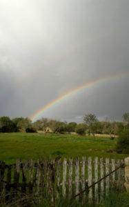 Regenbogen über Ses Tanques Malkursland